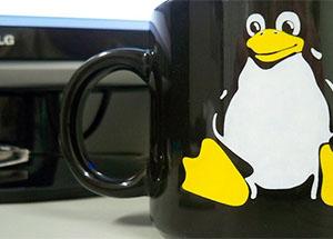 ¿Que distribución de Linux instalar en su hosting VPS?